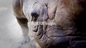 FRANKFURTinsights 07 Zoo06