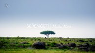 Serengeti_Savanna
