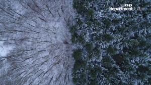 Winterwald_Rohmaterial.00_10_21_34.Still001